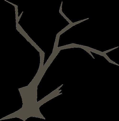 medis,filialai,gamta,filialas,miškas,miškai,mediena,siluetas,pilka,aštrus,bagažinė,žievė,lauke,baisu,nemokama vektorinė grafika