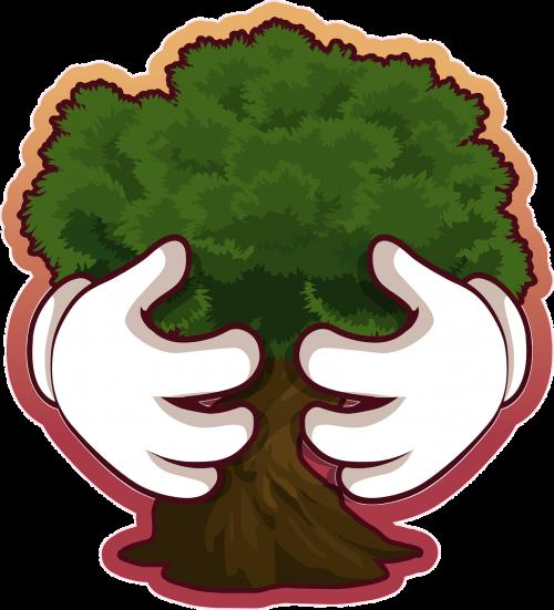 medis,išsaugojimas,aplinka,aplinkos apsauga,ekologiškas,lapija,aplinkosauga,apsaugoti,apsauga,ekologija,augalas,gamta,žalias,miškas,miškai,žemė,žemai draugiškas,eco,ekologiškas,nemokama vektorinė grafika