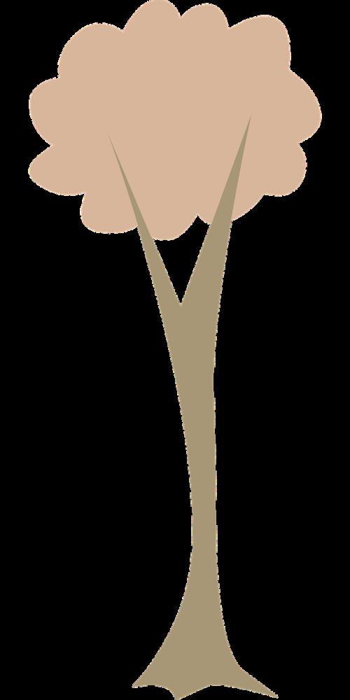 medis,bagažinė,gamta,lapai,filialai,grafika,ekologiškas,Žemdirbystė,augalas,augimas,nemokama vektorinė grafika
