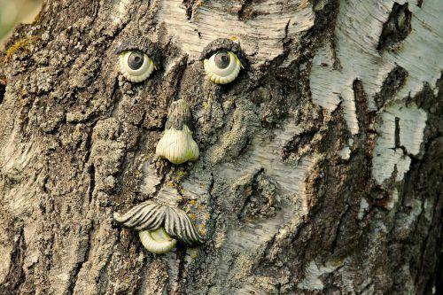 medžio veidas,medis,žievė,veidas,medžio dvasia,miško gaiva,žurnalas,gamtos dvasia,juokinga,gamta,mediena,medžio žievė,gnarled,akys,Burna,dvasia,monstras,šaknys,fantazija,sodas,Uždaryti,figūra,sodo figūrėlės