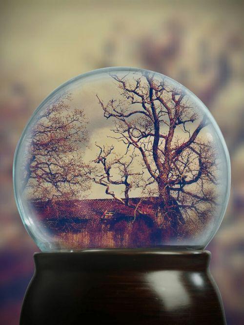 medžiai,estetinis,sniego rutulys,skalė,namelis,keista,niūrus