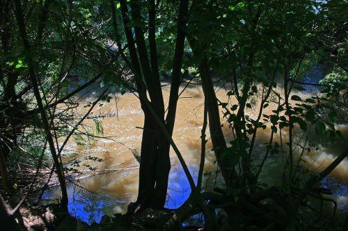 medžiai, lagaminai, siluetai, upė, vanduo, teka, medžiai upės krante