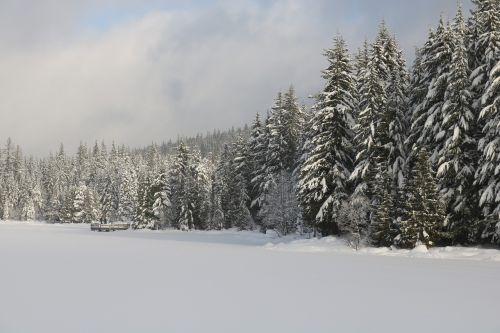 trilio ežeras,oregono ežeras,užšalęs ežeras,žiemos ežeras