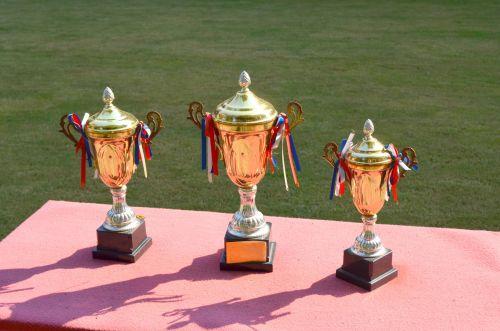 trofėjus, trofėjai, laimėti, nugalėtojas, laimėti, Pirmas, vieta, 1, apdovanojimas, pasiekimas, atlygis, sportas, Atletiškas, medaliai, trofėjus
