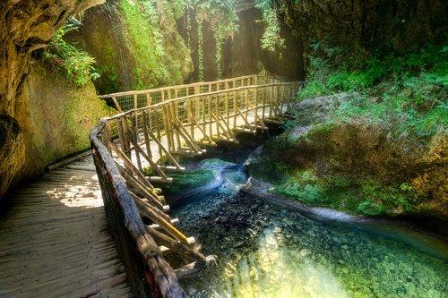 Tropical, tiltas, HDR, mediena, urvas, augalai, žalias, baseinas, vandens, šalto, kalnai, kelionė, peizažas, mėlyna, sala, natūralus, lauko