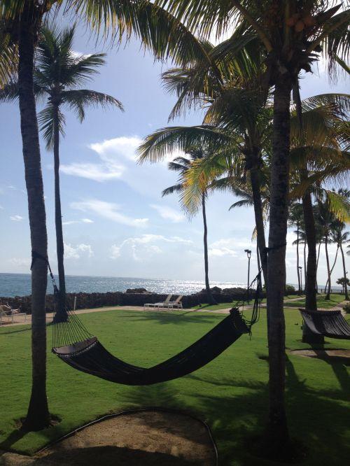 hamakas, atostogos, atsipalaidavimas, palmių & nbsp, medžiai, kurortas, atogrąžų atsipalaidavimas
