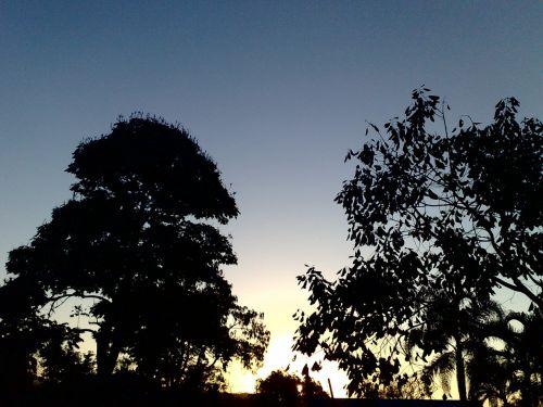 twilight,vakarą,dusk