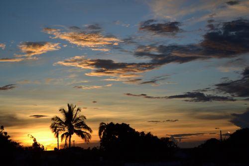 twilight uberlândia,popietė,vakarą,gamta,twilight,Brazilija,kokoso medžiai,horizontas,kraštovaizdis,debesis,minos,vasara,Ceu,sol