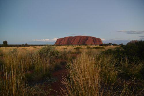 uluru, ayers rock, australia, raudona centras, Outback, dykuma, kraštovaizdis, dangus, gamta, žolė, kelionė, žaislinė žolė, be honoraro mokesčio