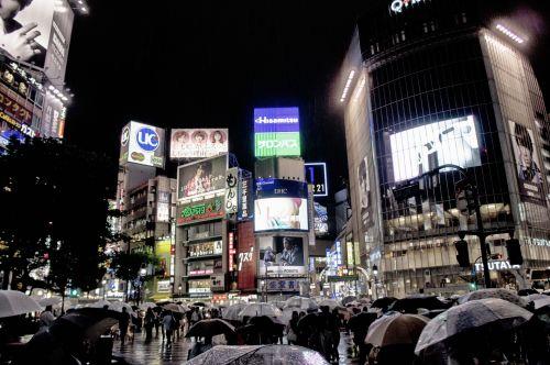 Japonija, Tokyo, shibuya, skėčiai, spalva, spalva, japanese, bėga, perėjimas, šviesos neonai & nbsp, skėčio kovos