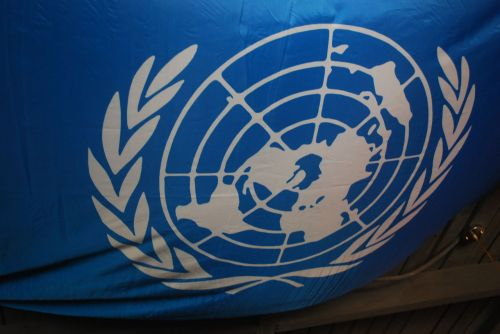vėliava, un, united, tautos, logotipas, ir vėliavos