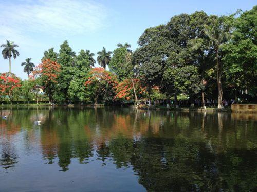 dėdės Ho ežeras,ežeras,Vietnamas,vietnamiečių,ha noi,keliauti po Hanojus,vietnam lanscape,medis,Hanojus kapitalas
