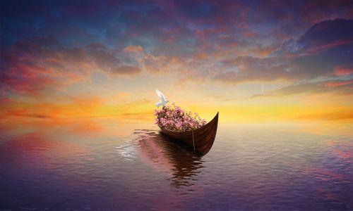 nerealu,laivas,jūrų