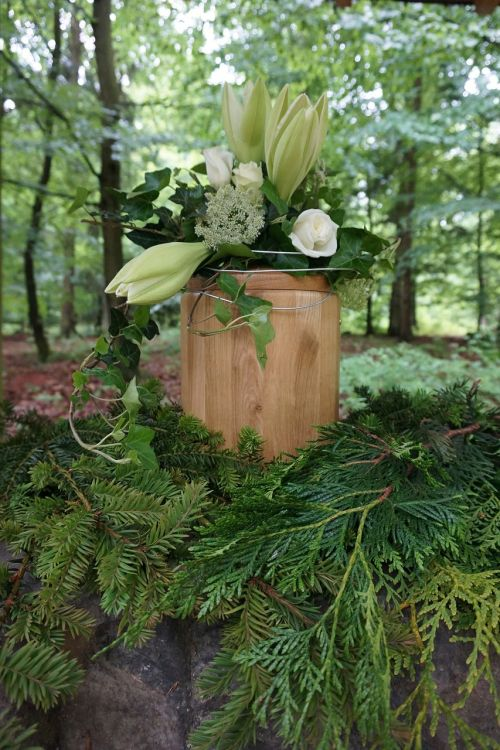 urn,laidotuves,gedulas,miško laidotuves,medžio laidojimas,kapinės,mirtis,miškas