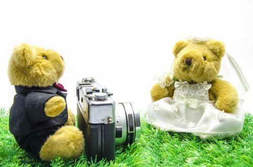 valentine,Vestuvės,turėti,senoji kamera,senovinė kamera,kino kamera,baltas fonas,lenta,spalvų erdvė