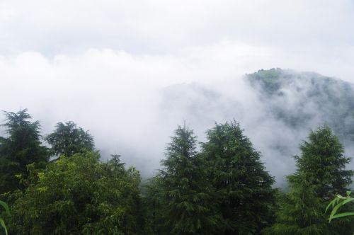 kalvos, slėnis, debesys, gamta, medžiai, dangus, kalnas, debesų slėnis 02