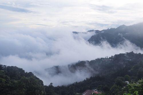 kalvos, slėnis, debesys, gamta, medžiai, dangus, kalnas, debesų slėnis 06