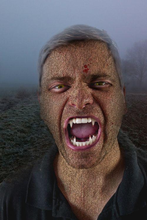 vampyras,tamsi,mistinis,grasinanti,niūrus