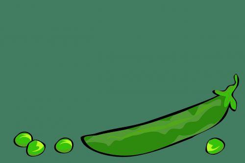 daržovės,žalias,žirniai,copyspace,maistas,sveikas,mityba,šviežias,vegetariškas,ekologiškas,ingredientas,šviežios daržovės