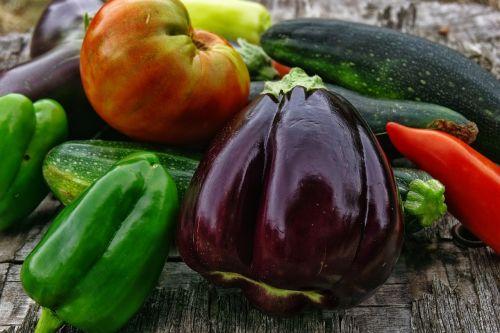 daržovės,ekologiškos daržovės,galia,bio,derlius,daržovių sodas,sodas,pomidorai,Baklažanas,cukinija,pipirai