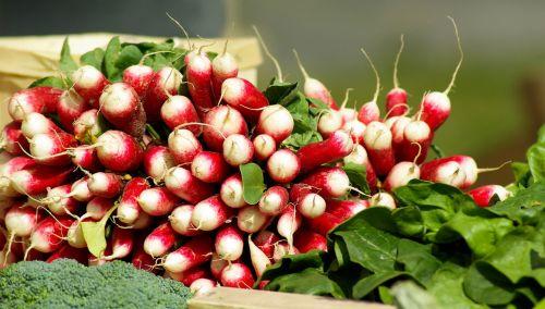 daržovės,ridikėliai,vitaminai,sodas