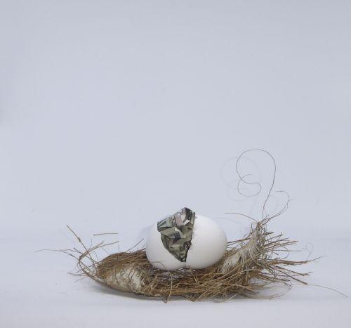 lizdas & nbsp, kiaušinis, pinigai, kiaušinis & nbsp, lukštas, kiaušinis, taupymas, voverė & nbsp, toli, vertikalus lizdas kiaušinis