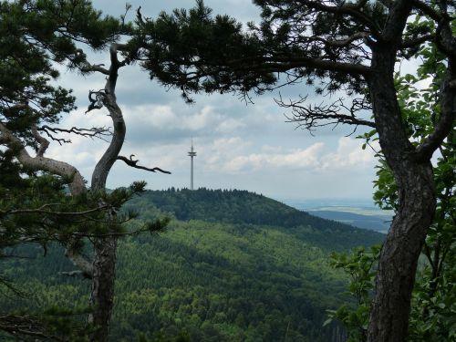 požiūris,tolimas vaizdas,avių kalnas,swabian alb,Zollernalb,albų karnizai,žygis,daugiau,alb hike,ekskursijos diena,Kelionės tikslas,swabian alb nordrand maršrutas,Balingen kalnai,balingen,radijo bokštas,bokštas,Vokietijos radijo bokštas gmbh,šiaurės viršūnė,plettenbergplateau,Plettenberg,telekomunikacijų bokštas,bokštas rūšių,gelžbetonis,ženklelis,orientyras,kalnas,aukšta uola