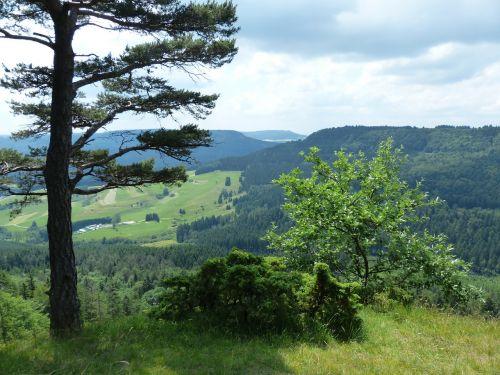 požiūris,tolimas vaizdas,avių kalnas,swabian alb,Zollernalb,albų karnizai,žygis,daugiau,alb hike,ekskursijos diena,Kelionės tikslas,swabian alb nordrand maršrutas,Balingen kalnai,balingen