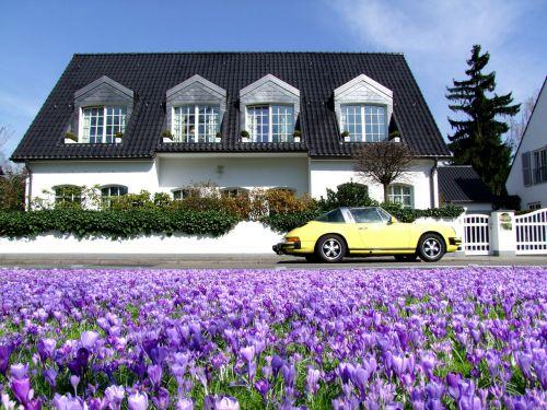 vila,namai,svajonių namai,prabanga,Porsche,Porsche Carrera,automatinis,rojus,gėlės,gėlių jūra,blütenmeer,Crocus,violetinė,pavasaris,Diuseldorfas,Vokietija,ryškios spalvos,spalvinga,farbenpracht,žydėti,geliu lova,žiedas,žydėti,spalva,saulėtas,saulėtas oras,gražus oras,graži diena