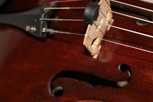 altas,styginis instrumentas,ruda,mediena,melodija,klasikinis,stygos,Klasikinė muzika,muzikos instrumentai,styginiai instrumentai,smuikas
