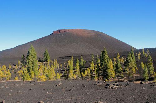 vulkanas, chinyero, Kanarų salos, Tenerifės kraštovaizdis, kalnas, lavos laukas, vulkaninis uolas, lava, Karg, be honoraro mokesčio