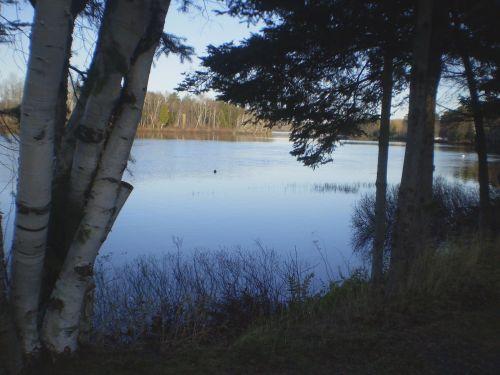 vanduo, kraštovaizdis, upė, gamta, kraštas, sienos, medžiai, vaizdas į upę