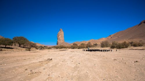 Wadi Tanget,  Hoggar,  Dykuma,  Smėlis,  Sausas,  Gamta,  Be Honoraro Mokesčio
