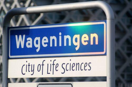 Wageningen, Universitetas, Studentas Miestas, Miestas, Savivaldybė, Gelderlandas, Žemės Ūkio Miestas, Mokslas