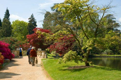 sodas, sodai, vaikščioti, vaikščioti, gėlės, medžiai, krūmai, krūmai, ežeras, gražus, vaikščioti soduose