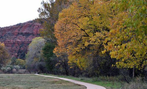 kelias, takai, vaikščioti, vaikščioti, kritimas, ruduo, sedona, Arizona, laukas, poilsis, dykuma, medžiai, vaikščiojimo takas per laukus