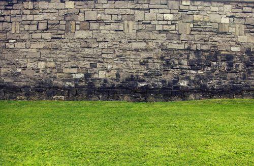 siena, senoji siena, žolė, žalias, veja, istorinės sienos, gotikinė siena, plytos, gėlės, pavasaris, plytų siena, plyta, žalias laukas, akmeninė siena