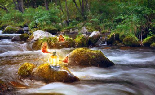 tapetai, drugelis, fantazija, upė, akmenys, šviesa, stebuklinga, fėja & nbsp, pasaka, fėja, miškas, gamta, žinoma, žibintas, tapetai fantazijos