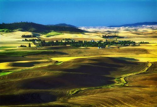 Vašingtonas,usa,kraštovaizdis,vaizdingas,kalvos,laukai,kaimas,vista,gamta,lauke,kalvos