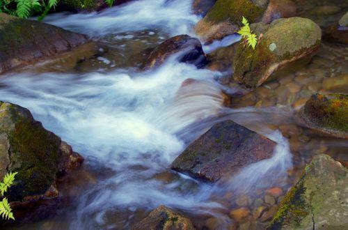 vanduo,Japonija,natūralus,upė,mineralinis vanduo,vandens šaltiniai,kraštovaizdis,shimizu krioklys,žolė,Japonijos namas,šviesa