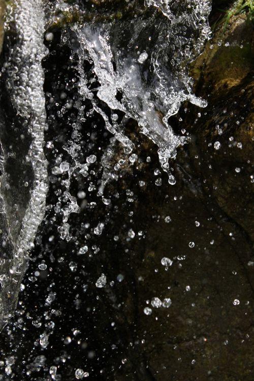 vanduo,purslų,lašas,burbulas,vandens lašas,šlapias,lietus,šviežias,gamta,vandens purslų,judėjimas,purslų,purslų vanduo,šviežumas,aplinka,šaltas,makro,aišku,vandens lašai