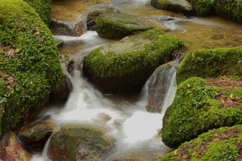 vanduo,Bachas,gamta,kraštovaizdis,murmur,miškas,natūralus vanduo,vandenys,srautas,upė,ilga ekspozicija,vanduo veikia,torrent,vandens srautas