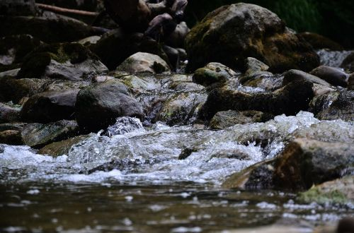 vanduo,Bachas,gamta,natūralus vanduo,vandenys,srautas,upė,vandens srautas,torrent,Švarus,vanduo veikia