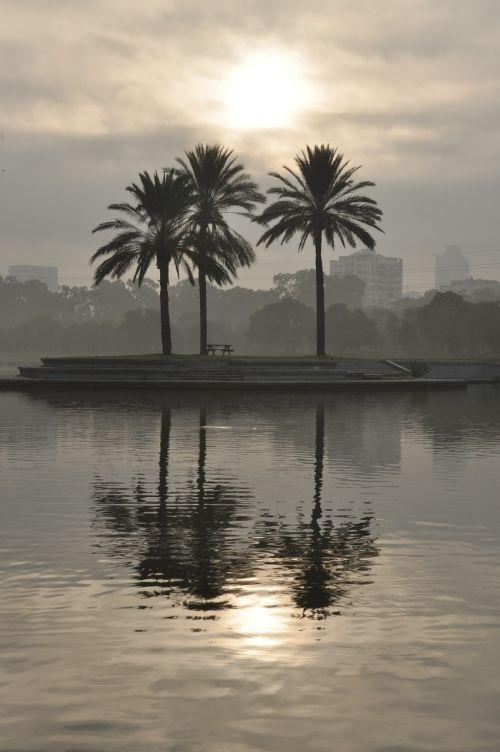 vanduo,ežeras,medis,gamta,kraštovaizdis,dangus,natūralus,rytas,parkas,aplinka,saulė,aušra,saulėtekis,atspindys,debesys,pilka