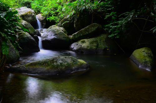 vandens srautas,Rokas,žali lapai,natūralus,srautas,vis dar,srautas,medžiai,savybės