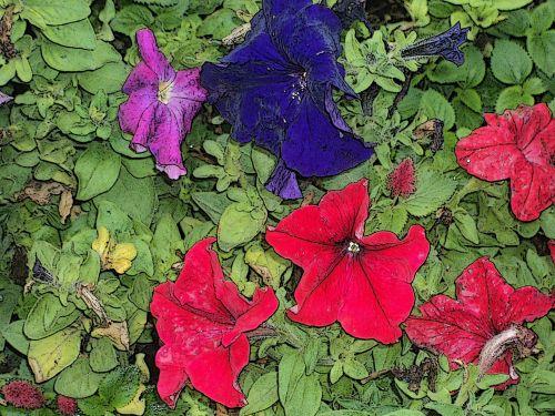 vanduo & nbsp, dažymas & nbsp, gėlės, gėlės, lapai, dažymas, Photoshop, gėlė, vandens dažai gėlės