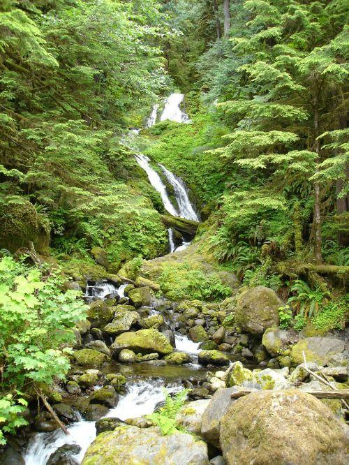 krioklys,ežeras kvinauto,gamta,kraštovaizdis,natūralus,augmenija,vanduo,natūralus vanduo