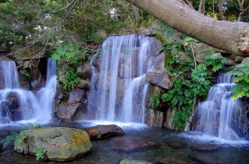 krioklys,vanduo,vasara,Japonija,natūralus,upė,žalias,kraštovaizdis,natūralus vanduo,miškai,Peržiūros,Saunus,lauke,drakonas,teka,vaizdas