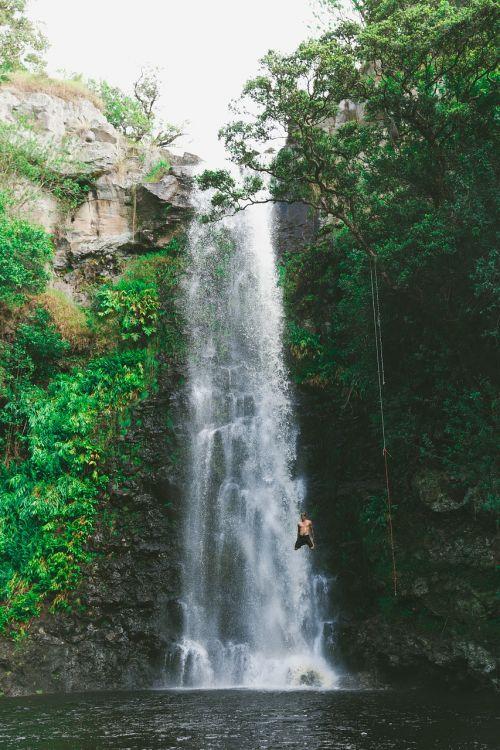 krioklys,žalias,žolė,samanos,medis,augalas,gamta,vanduo,žmonės,vyras,maudytis,nardymas,nuotykis