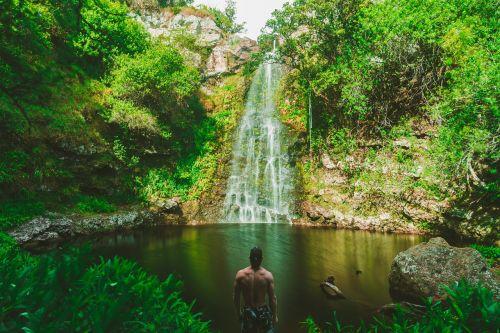 krioklys,žalias,žolė,akmenys,samanos,medžiai,augalas,gamta,vanduo,žmonės,vyras,nuotykis